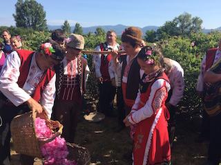 Mayo - junio 2021 La rosa damascena en Bulgària