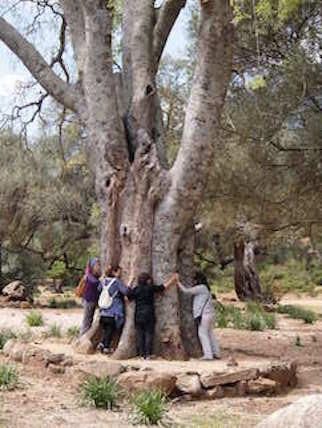 SETMANA SANTA  2019 Primavera a  l'illa de Sardenya
