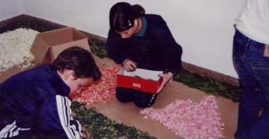 11.- Guirnalda con flores frescas
