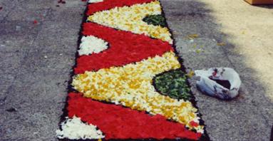12.- Catifes de flors