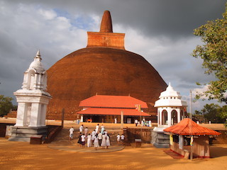 FEBRER 2020  Sri Lanka. L'illa del te, de les espècies i de les nimfes