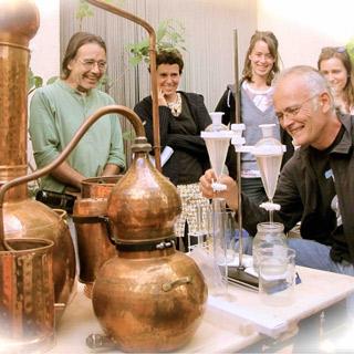 NOVIEMBRE 2017 Usos medicinals i culinaris de la murtra. Destil.lació per obtenir l'aigua de murtra