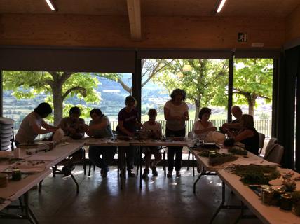 AGOST 2017 - Iniciació al coneixement de les herbes remeieres